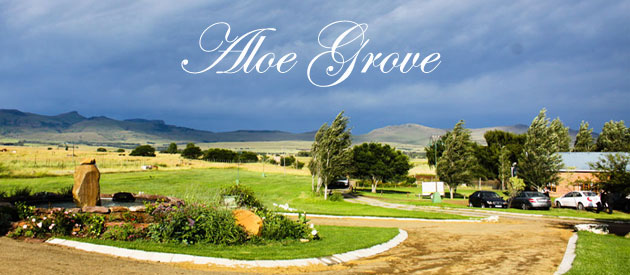 ALOE GROVE GUEST FARM, QUEENSTOWN