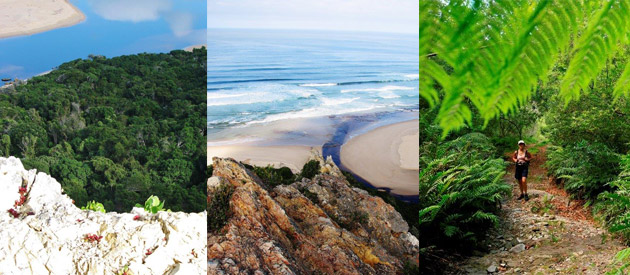 tsitsikamma hiking trail, equipment portage, trail accommodation, bush hiking, garden route hiking, beach hiking, green flag trails, mto group